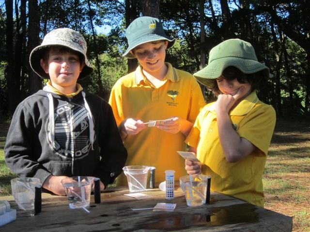 students at a stream watch experiment
